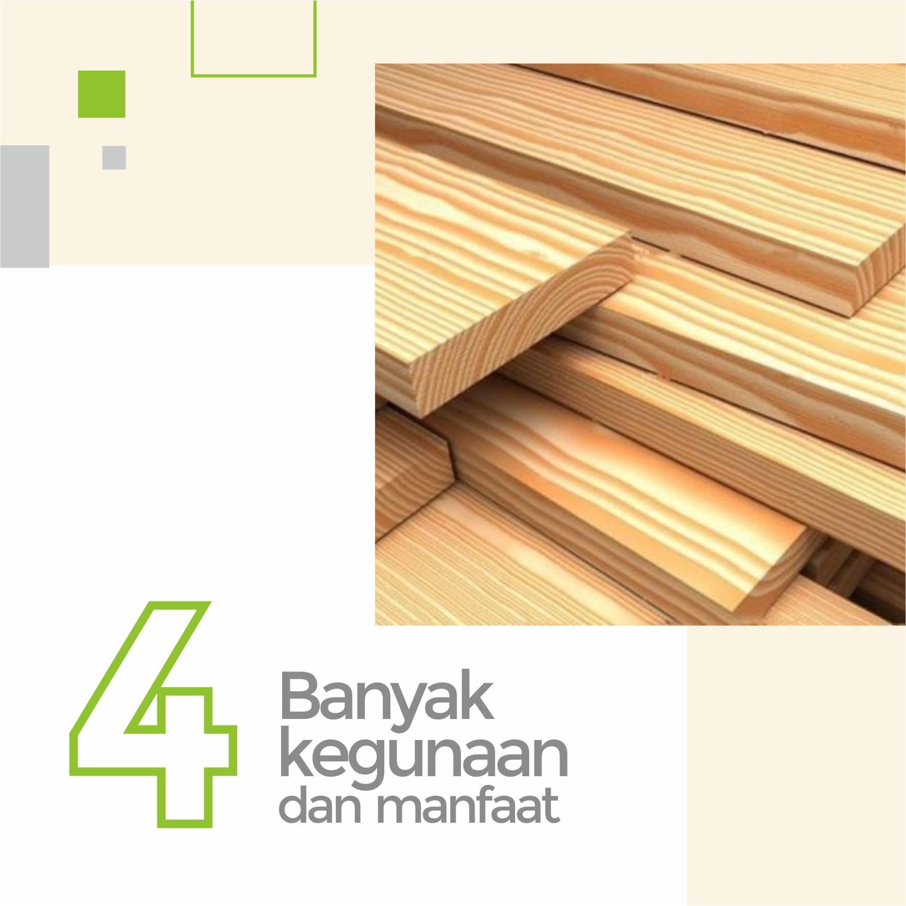 Banyak guna dan manfaat pada kayu jati belanda